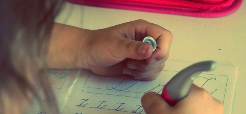 Kaynaştırma Modeli Geliştirme Projesi Sınıf İçi Yardım Okuma Notları